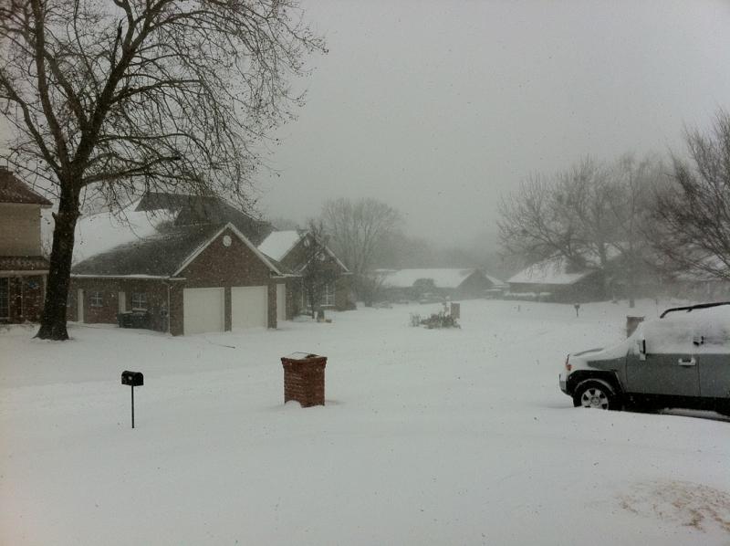 Snowy-Bent-Trail